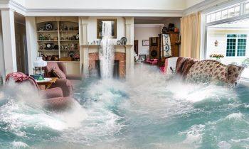 Flood Insurance Zones